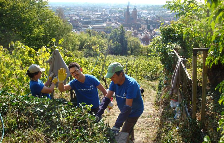 Foto: Freiwilligentag Metropolregion Rhein-Neckar